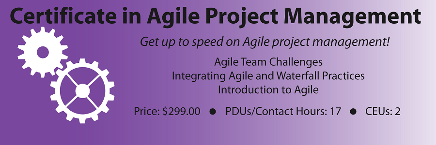 Certificate in Agile Project Management